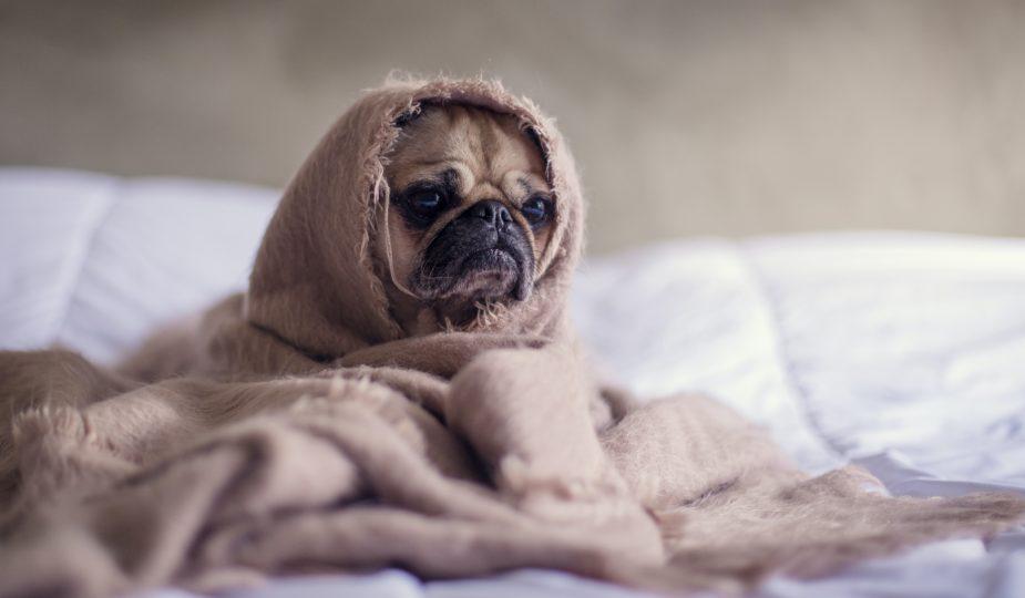 déprime, fatigue ou dépression: symptômes
